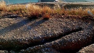 """Alertan de la aparición de grietas en la ladera derecha de Yesa """"con una profundidad no observada desde el 2013"""""""